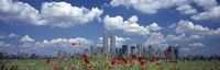 Red Flowers in a park with buildings in the background, Manhattan Fine-Art Print