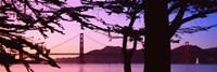 Suspension Bridge Over Water, Golden Gate Bridge, San Francisco, California, USA Fine-Art Print