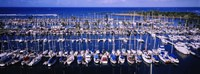 High angle view of boats in a row, Ala Wai, Honolulu, Hawaii Fine-Art Print