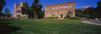 Lawn in front of a Royce Hall and Haines Hall, University of California, City of Los Angeles, California, USA Fine-Art Print