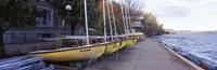 Sailboats in a row, University of Wisconsin, Madison, Dane County, Wisconsin, USA Fine-Art Print