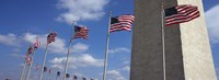 American flags in front of an obelisk, Washington Monument, Washington DC, USA Fine-Art Print