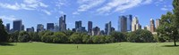 Park with skyscrapers in the background, Sheep Meadow, Central Park, Manhattan, New York City, New York State, USA Fine-Art Print