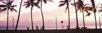 Palm trees on the beach, Waikiki, Honolulu, Oahu, Hawaii Fine-Art Print