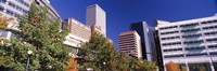 Low angle view of buildings in a city, Sheraton Downtown Denver Hotel, Denver, Colorado, USA Fine-Art Print