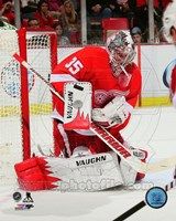 Jimmy Howard Gaurding Hockey Goal Fine-Art Print