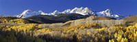 USA, Colorado, Rocky Mountains, aspens, autumn Fine-Art Print