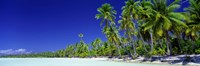 Beach With Palm Trees, Bora Bora, Tahiti Fine-Art Print