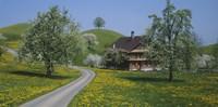 A road through Zug, Switzerland Fine-Art Print
