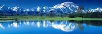 Mt McKinley and Wonder Lake Denali National Park AK Fine-Art Print