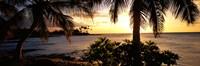 Kohala Coast, Hawaii, USA Fine-Art Print