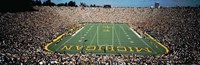 University Of Michigan Stadium, Ann Arbor, Michigan, USA Fine-Art Print