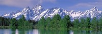 Grand Tetons National Park WY Fine-Art Print