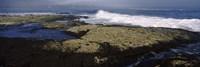 Rock formations at the coast, Fernandina Island, Galapagos Islands, Ecuador Fine-Art Print