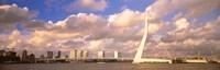 Netherlands, Holland, Rotterdam, Erasmus Bridge Fine-Art Print