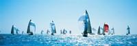 Sailboat Race, Key West Florida, USA Fine-Art Print