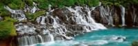 Waterfall In A Forest, Hraunfoss Waterfall, Iceland Fine-Art Print