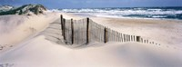 USA, North Carolina, Outer Banks Fine-Art Print