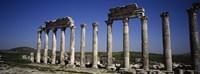 Cardo Maximus Ruins, Apamea, Syria Fine-Art Print