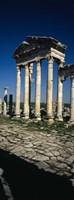 Old ruins of a built structure, Entrance Columns, Apamea, Syria Fine-Art Print