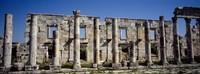 Ruins at Cardo Maximus, Apamea, Syria Fine-Art Print