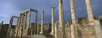 Columns of buildings in an old ruined Roman city, Leptis Magna, Libya Fine-Art Print