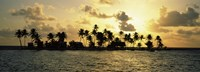 Silhouette of palm trees on an island at sunset, Laughing Bird Caye, Victoria Channel, Belize Fine-Art Print