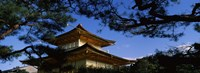 Low angle view of trees in front of a temple, Kinkaku-ji Temple, Kyoto City, Kyoto Prefecture, Kinki Region, Honshu, Japan Fine-Art Print