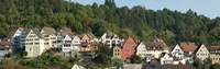 Buildings in a city, Horb am Neckar, Northern Black Forest Region, Baden-Wurttemberg, Germany Fine-Art Print