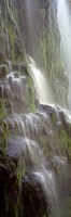 Waterfall in a forest, Proxy Falls, Three Sisters Wilderness Area, Willamette National Forest, Oregon Fine-Art Print