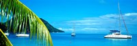 Sailboats in the ocean, Tahiti, Society Islands, French Polynesia (horizontal) Fine-Art Print
