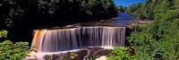 Waterfall in a forest, Tahquamenon Falls, Tahquamenon River, Michigan, USA Fine-Art Print