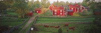 Traditional red farm houses and barns at village, Stensjoby, Smaland, Sweden Fine-Art Print