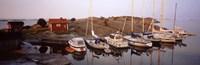 Sailboats on the coast, Stora Nassa, Stockholm Archipelago, Sweden Fine-Art Print
