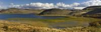 Pond with sedges, Torres del Paine National Park, Chile Fine-Art Print