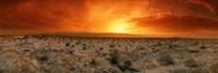 Sunset over a desert, Palm Springs, California, USA Fine-Art Print
