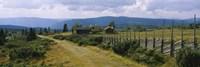 Farmhouses in a field, Gudbrandsdalen, Oppland, Norway Fine-Art Print