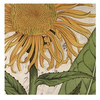 Joyful Bloom I Fine-Art Print