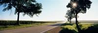 Road passing through fields, Illinois Route 64, Illinois, USA Fine-Art Print