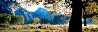 Half Dome, Yosemite National Park, California, USA Fine-Art Print