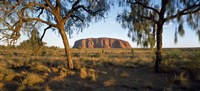 Ayers Rock Australia Fine-Art Print