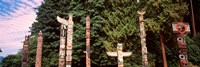 Totem poles in a park, Stanley Park, Vancouver, British Columbia, Canada Fine-Art Print