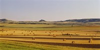 Slope country ND USA Fine-Art Print
