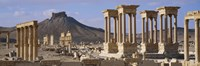 Colonnades on an arid landscape, Palmyra, Syria Fine-Art Print