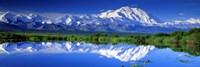 Alaska Range, Denali National Park, Alaska, USA Fine-Art Print