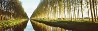Belgium, tree lined waterway through countryside Fine-Art Print