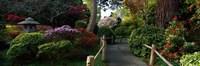 Japanese Tea Garden, San Francisco, California, USA Fine-Art Print