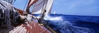 Yacht Race Fine-Art Print