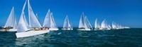 Sailboats racing in the ocean, Key West, Florida Fine-Art Print