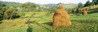 Farm, Transylvania, Romania Fine-Art Print